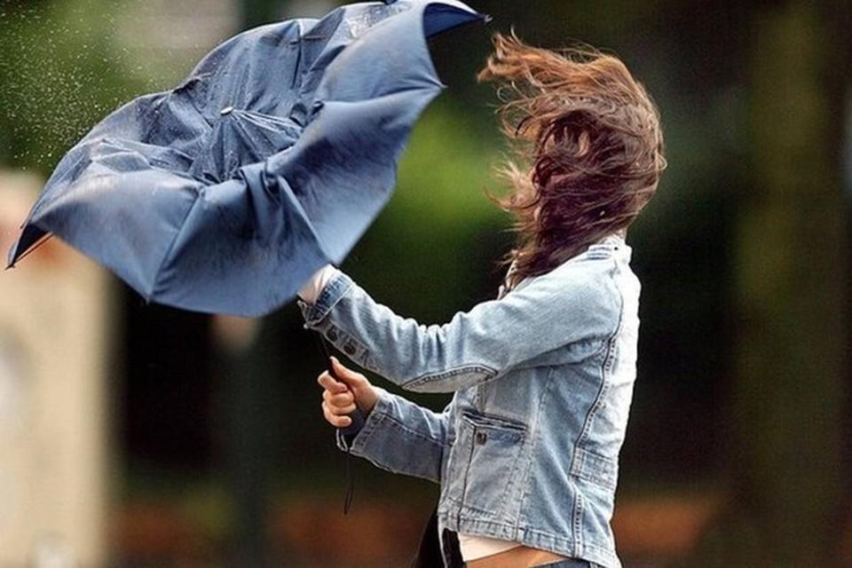 В Белгороде при грозе порывы ветра могут достигать 15-20-ти метров в секунду.