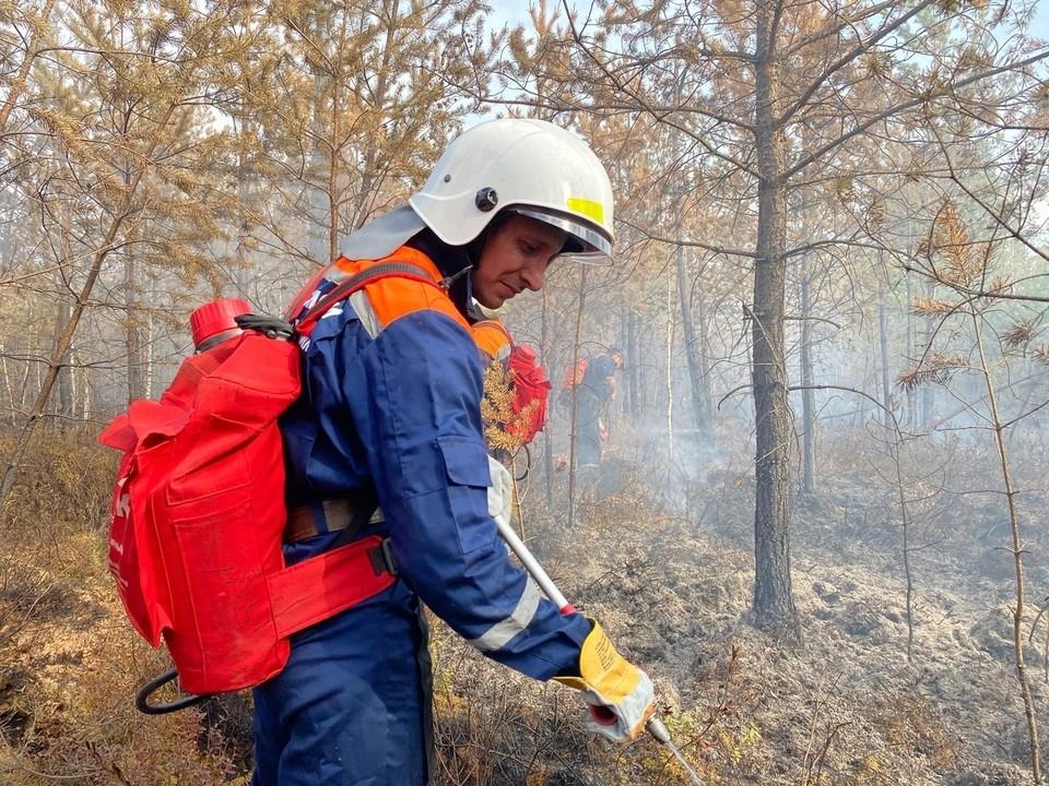 Студентам, помогавшим тушить пожары в Тюменской области, дали благодарственные письма от МЧС.