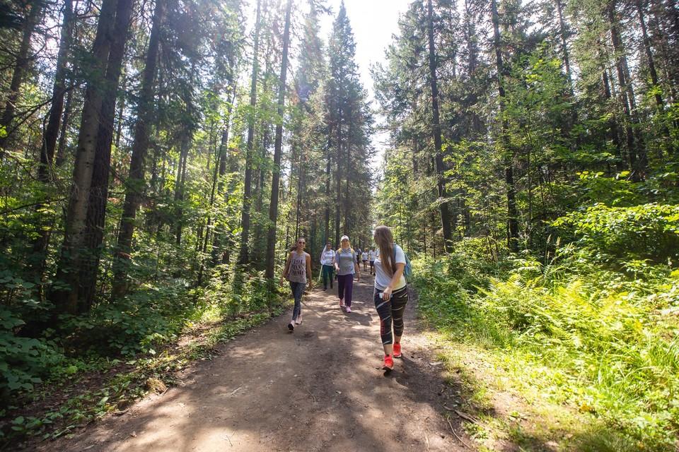 В нацпарке Таганай участники пробегут дистанцию длиной в 4,2 км