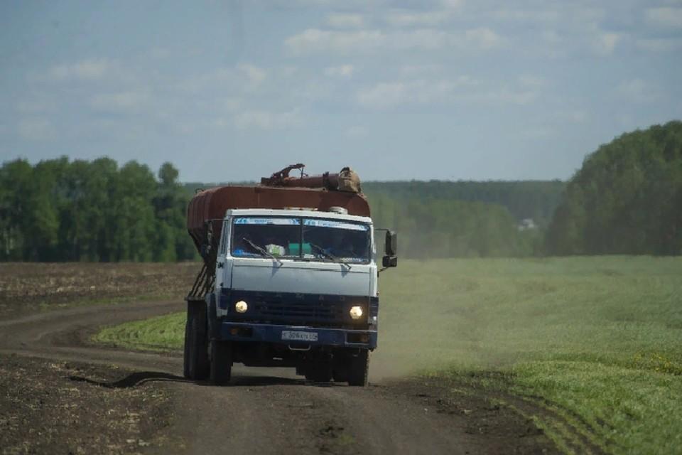 В этом году в Республике увеличили посевную площадь яровых зерновых и зернобобовых культур на 29 процентов
