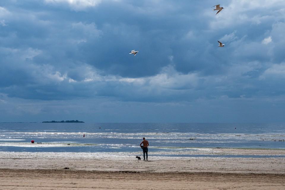 Записку женщина пустила по волнам Финского залива.