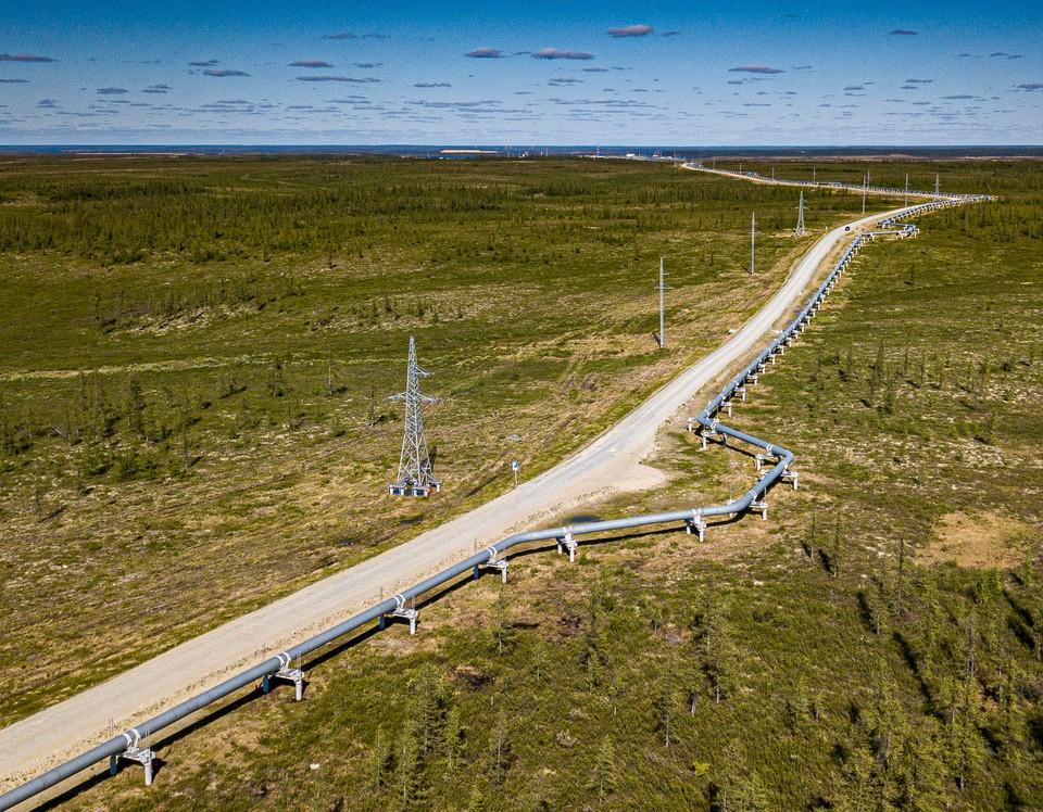 АО «Транснефть – Сибирь» завершило сезонный геомониторинг объектов МН Заполярье – Пурпе. Фото - АО «Транснефть – Сибирь».