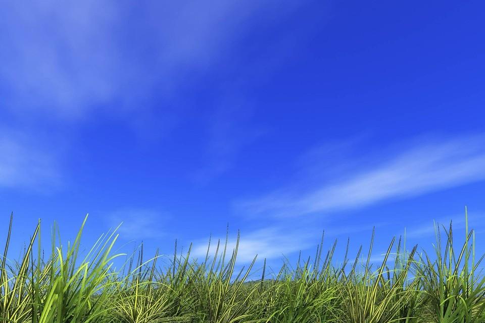 В Ижевске будет солнечно Фото: pixabay.com