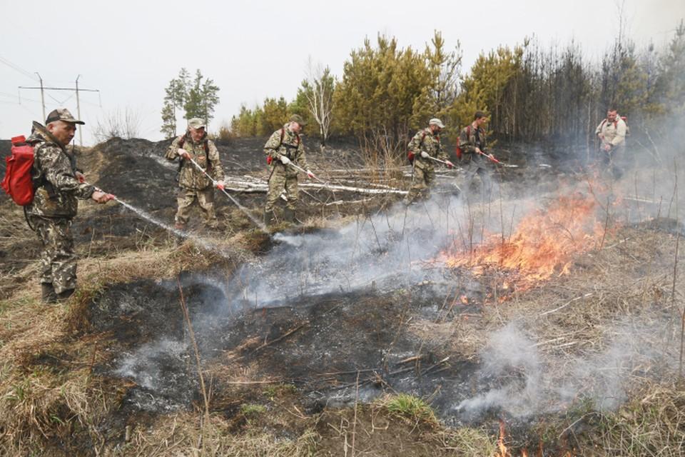 В Авиалесохране уточняют, что населенным пунктам эти пожары не угрожают.