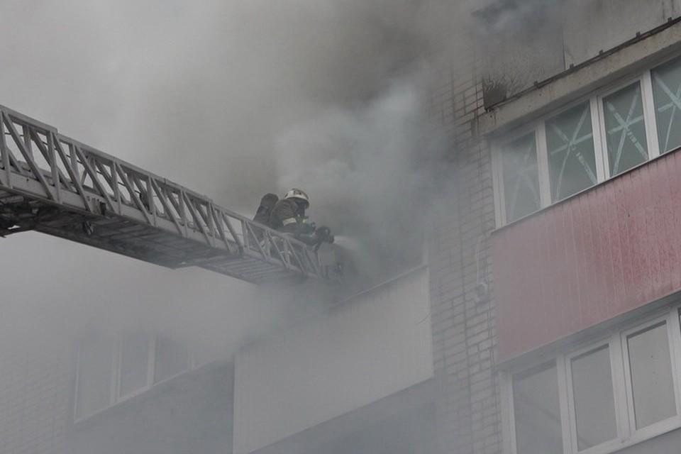 Трагедия случилась в однокомнатной квартире на четвертом этаже девятиэтажного дома. Фото: МЧС ЛНР