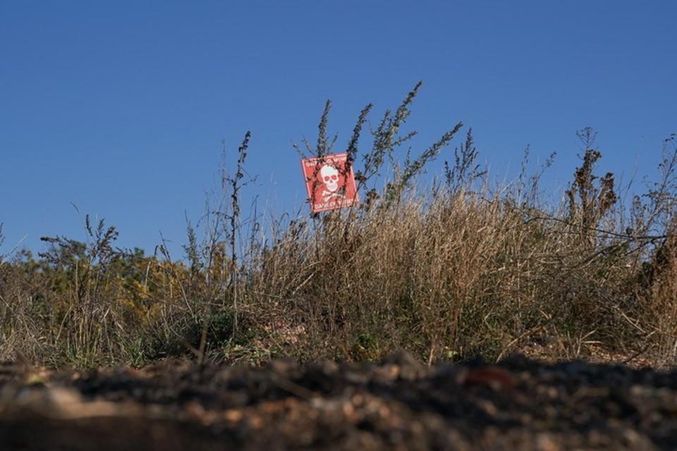 Украинские саперы не на всех минных полях ставят предупреждающие таблички. Фото: Пресс-центр штаба ООС