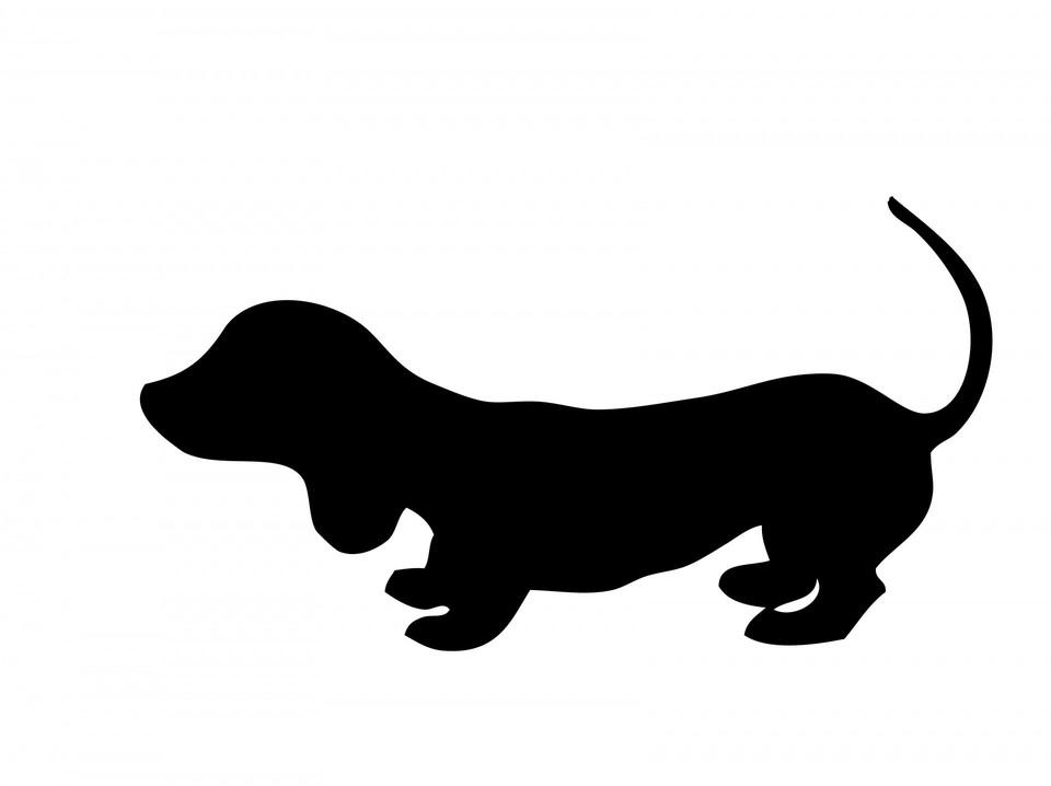 Мошенник обманул ижевчанина, пытавшегося купить у него щенка Фото: pixabay.com