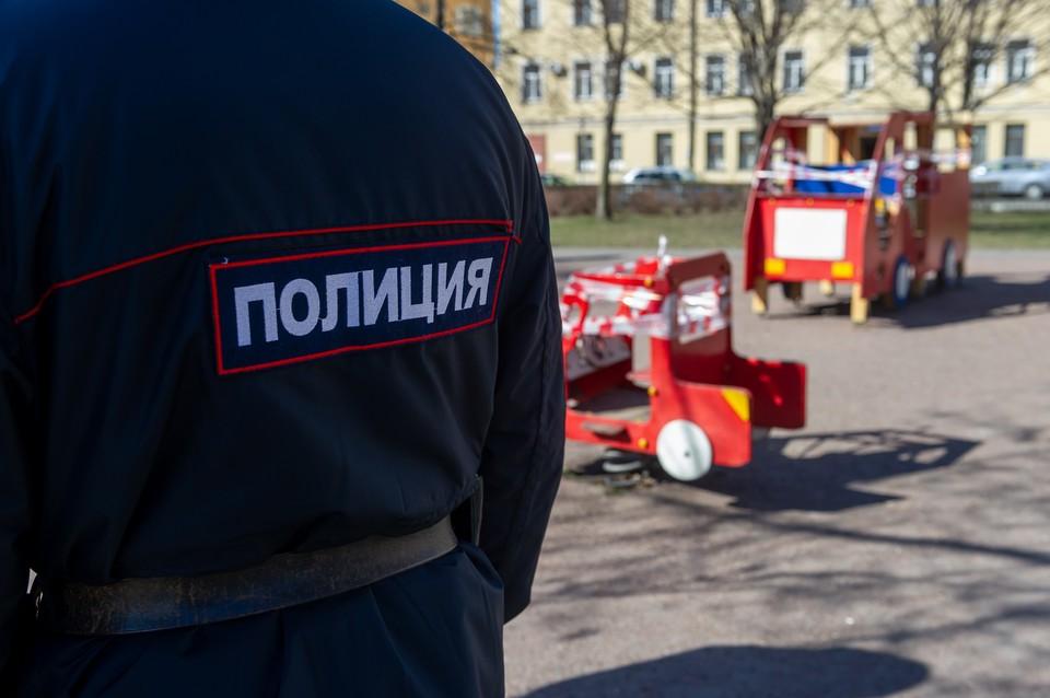 Школьница пострадала на детской площадке в Красносельском районе Петербурга.