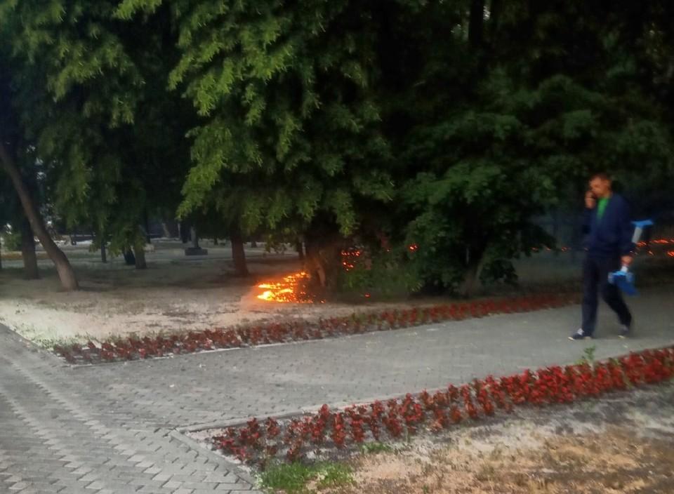 На Текутьевском кладбище горел пух
