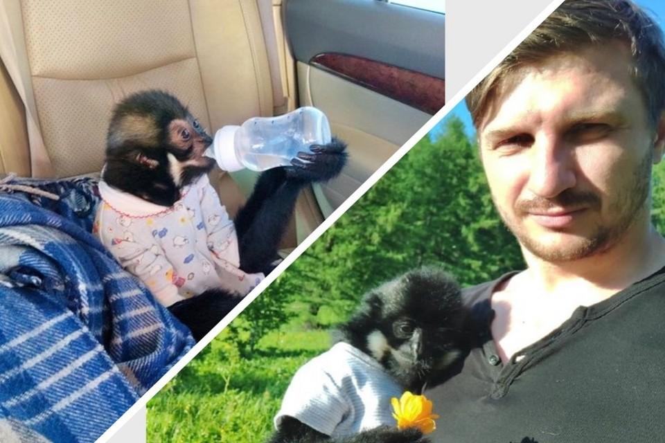 Еще пару лет назад Дмитрий и подумать не мог, что станет папой для обезьянки. Фото: Предоставлено хозяином обезьяны Дмитрием