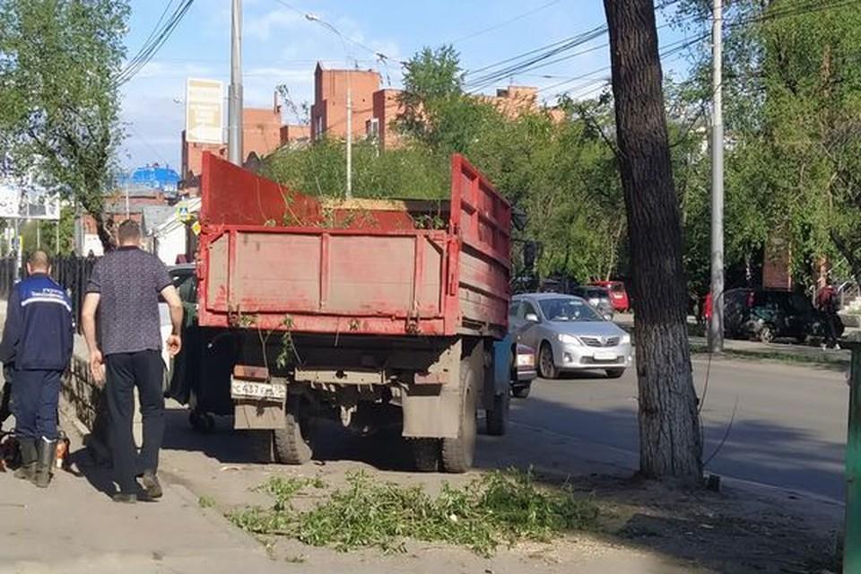 Специальные службы убирают остатки деревьев, упавших на улицах Томска. Фото: пресс-служба городской мэрии.