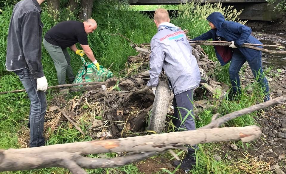 Борьба за природу в Севастополе приобретает системный характер. Фото: архив «КП»-Севастополь»