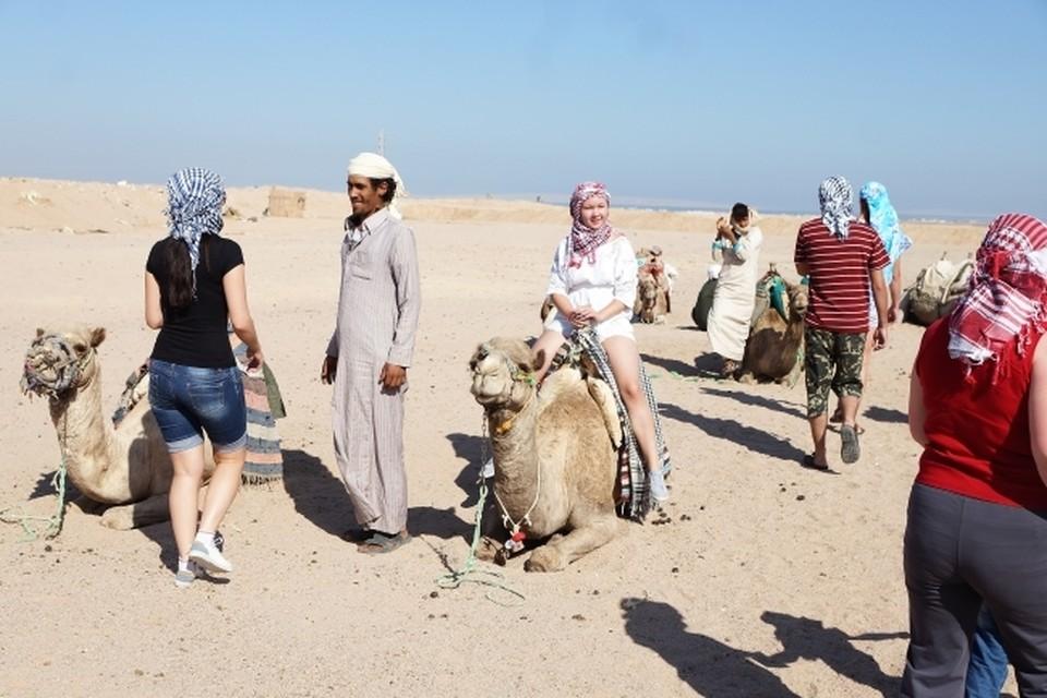 Чтобы добраться до Красного моря, ростовским туристам придется еще пять часов ехать из аэропорта в Каире.