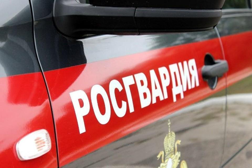 Росгвардеец успокоил ребенка, а позже его передали родителям. Фото: Росгвардия Ярославской области