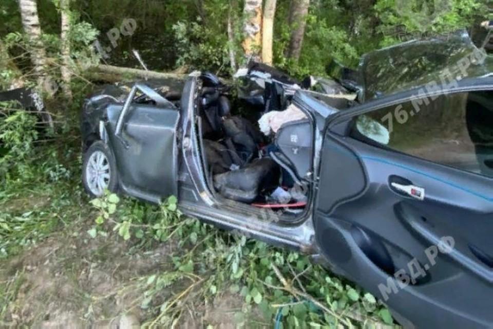 Девушка-водитель не справилась с управлением и врезалась в дерево