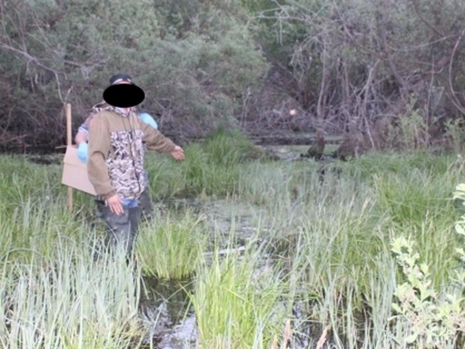 В Абатском мужчина забил лопатой прохожего и утопил труп в болоте.
