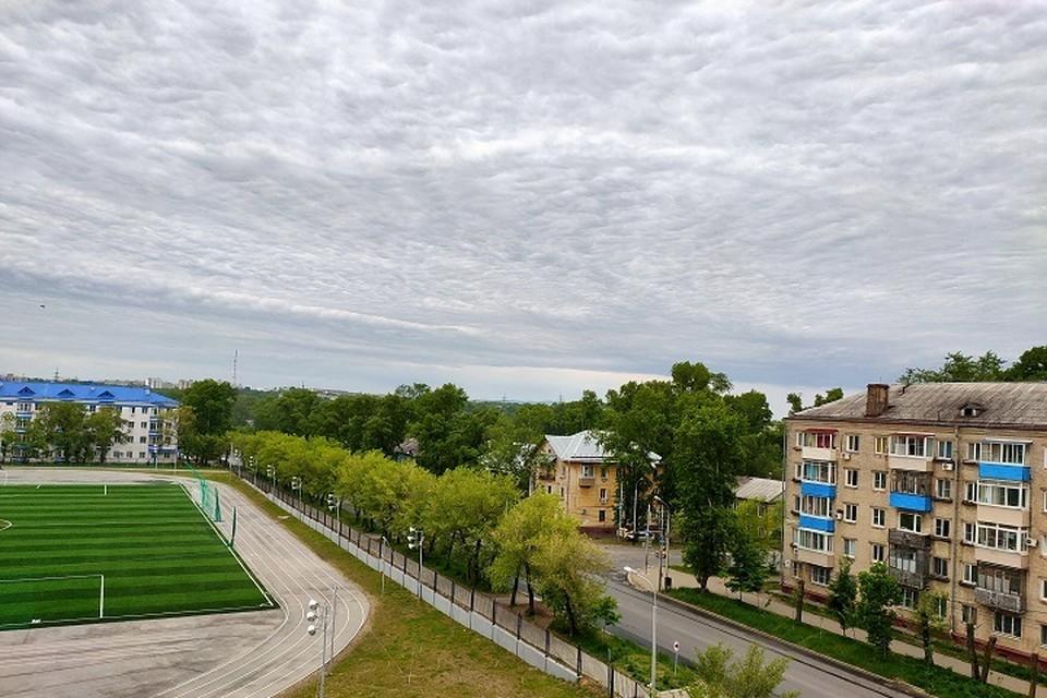 Погода 11 июня: в Хабаровске пойдет дождь
