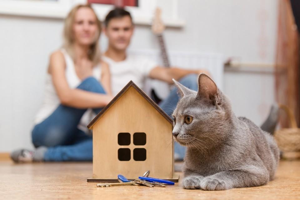 С 1 июля 2021 года льготная ипотечная ставка при покупке жилья в новостройке повышается с 6,5% до 7%.