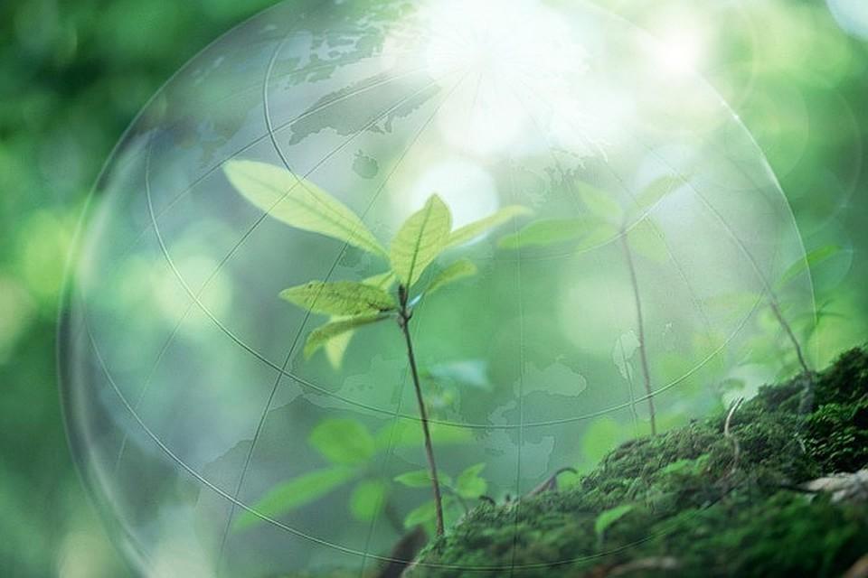 «РТ-Инвест» подключилась к развитию отрасли возобновляемой энергетики