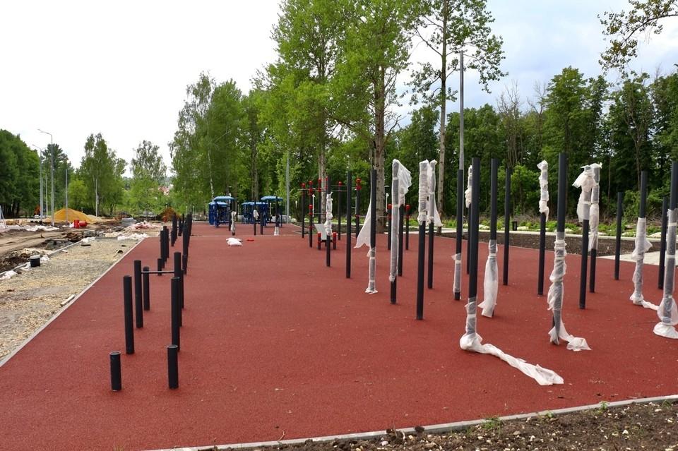 В Парке Победы в Орле оборудуют площадку для экстремального спорта. Фото: Портал Орловской области