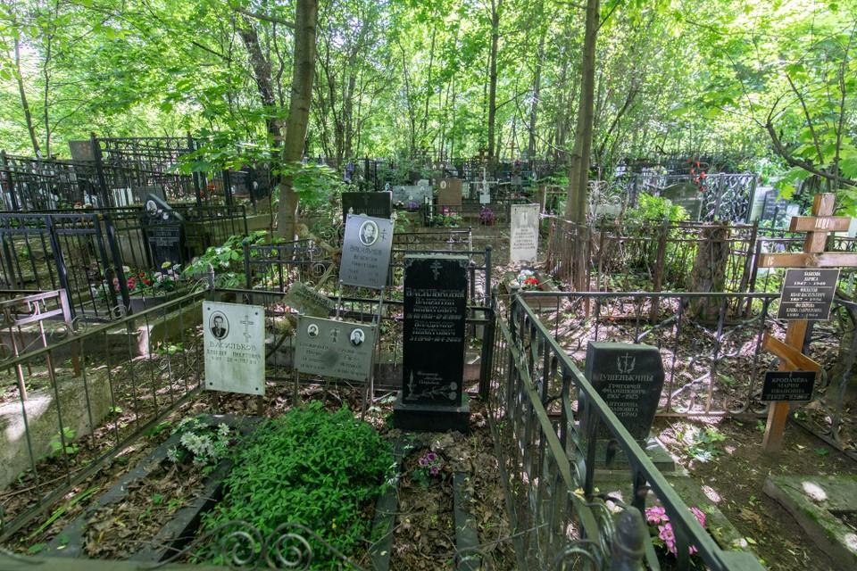 Власти Рязани заказали 1-й этап строительства Преображенского кладбища.