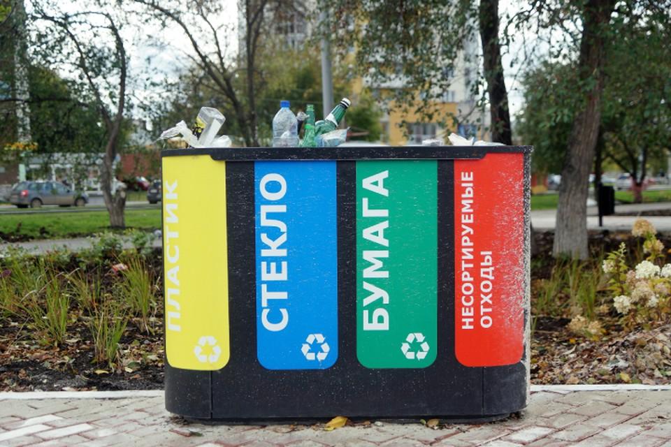 Проект по раздельному сбору мусора в Кирово-Чепецке разработали эко-активисты.