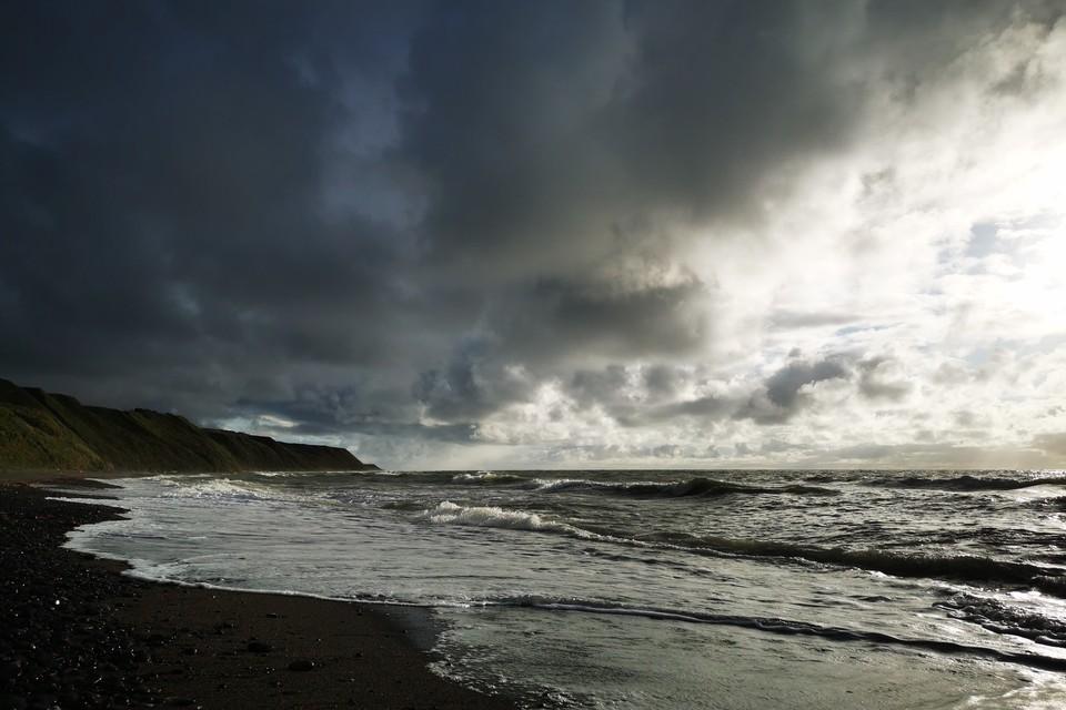 Тропический шторм «Чампи», который достиг стадии тайфуна в Тихом океане, может испортить погоду в Сахалинской области на следующей неделе