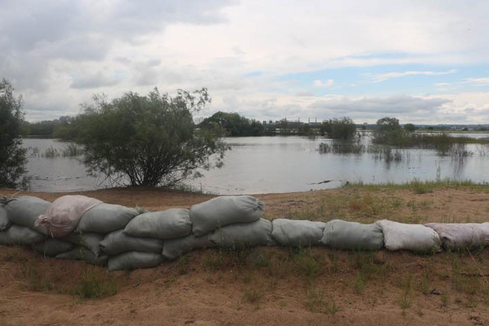 В Хабаровск пришла волна паводка, который сформировался в верховьях Амура
