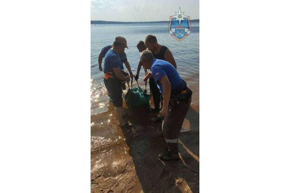 10-летний мальчик утонул в Большом Симагинском озере в Ленобласти / Фото: аварийно-спасательная служба Ленобласти