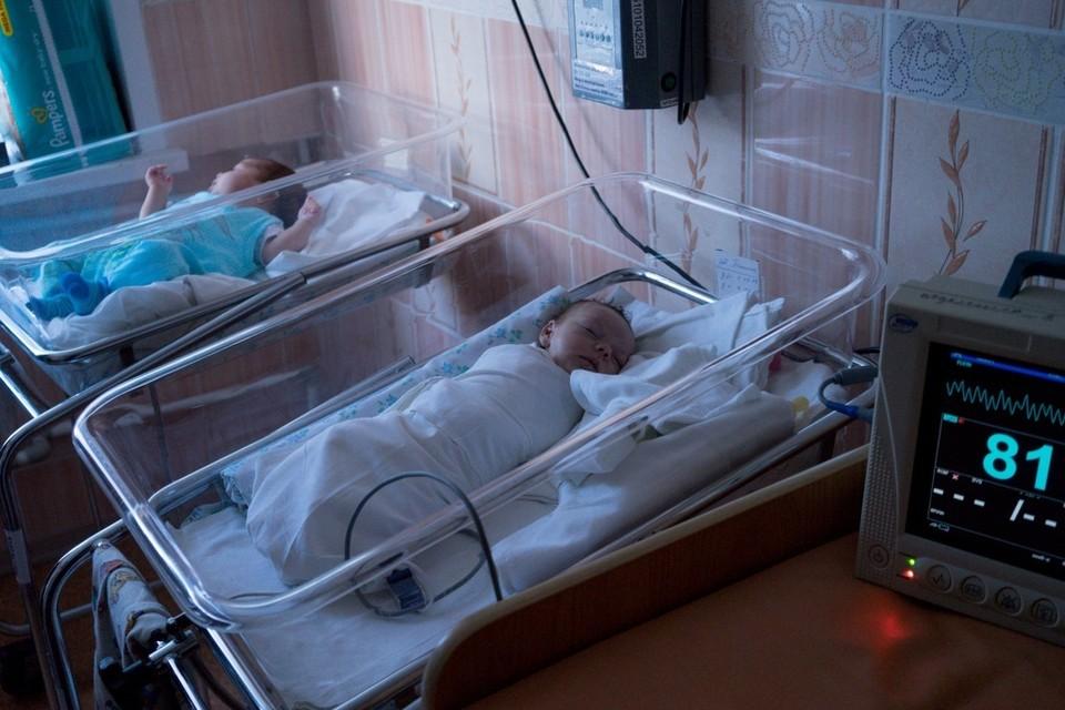 Процедура ЭКО в Орловской области помогла родиться 12 малышам