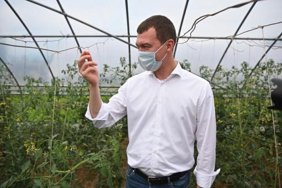 Новый цех по консервированию овощей запустят в Хабаровском крае