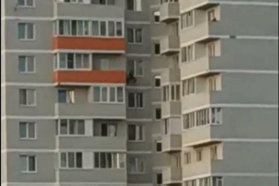 """Мужчина перелезал с балкона на балкон на высоте 8 этажа. Скриншот с видео, группа """"Жесть Ярославль"""""""