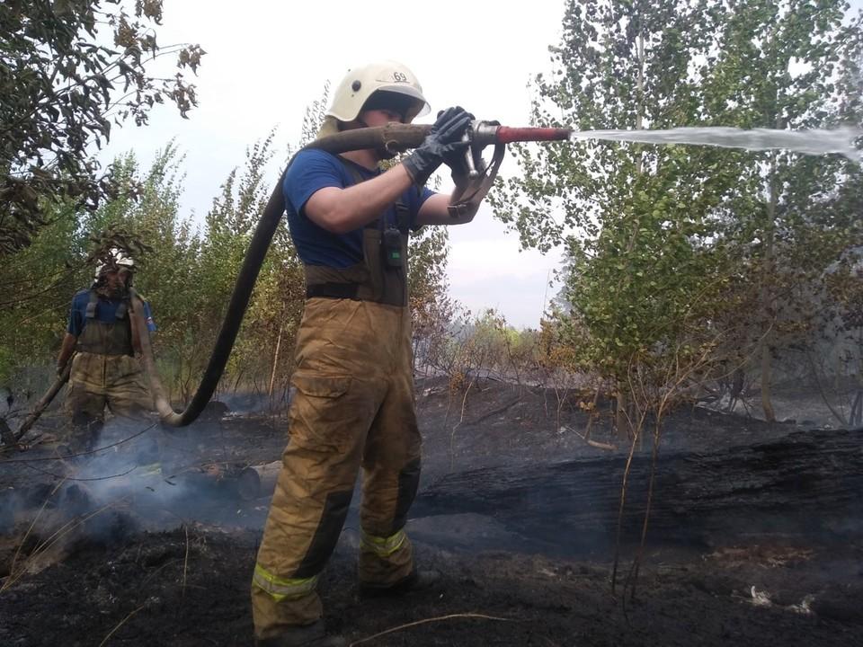 В Тольятти тушат крупный лесной пожар. Фото - ГУ МЧС России по Самарской области