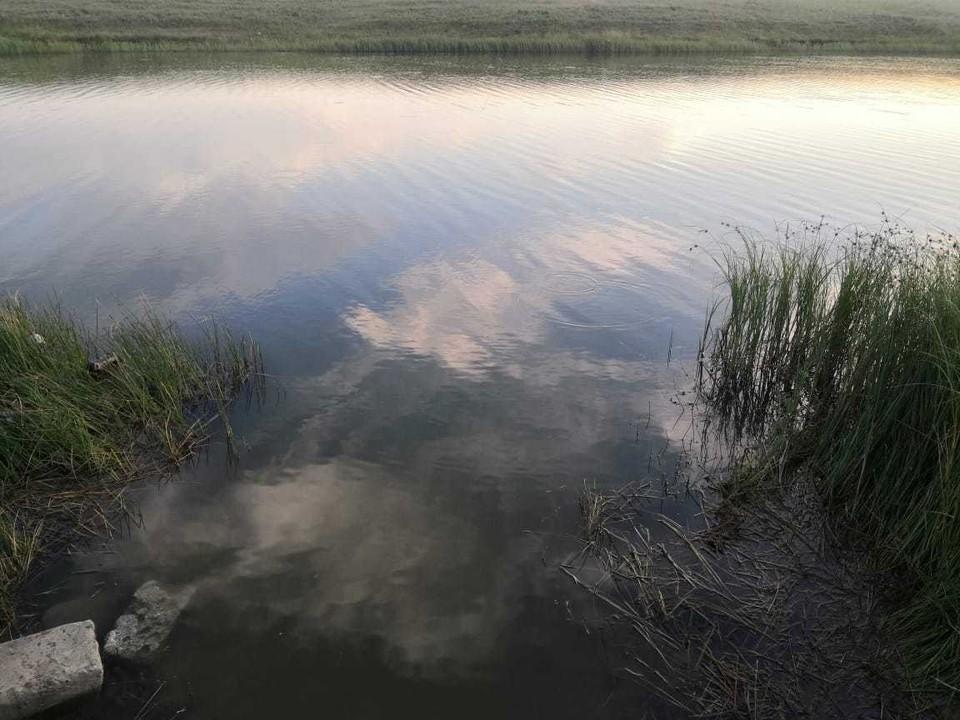 Мужчина утонул, переплывая пруд