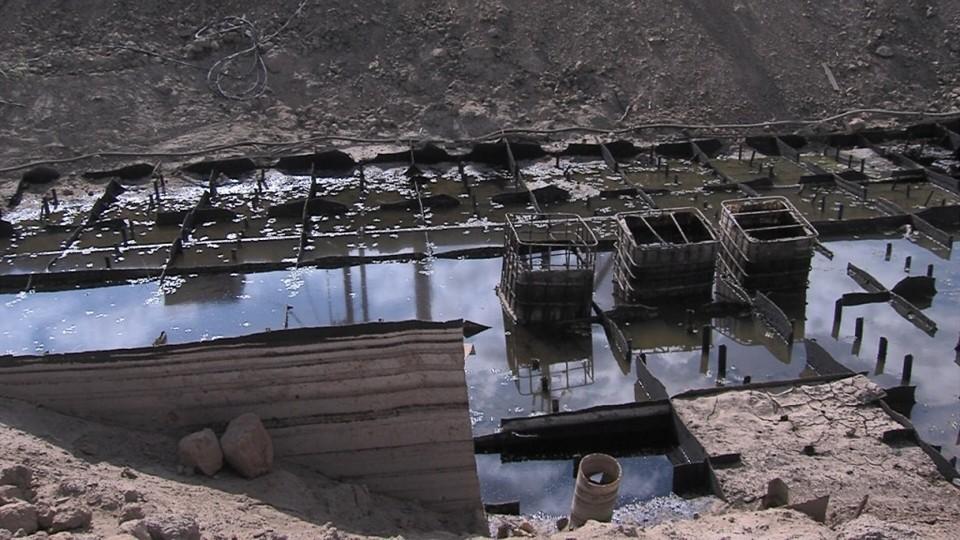 Охотники за чёрным металлом стали причиной гибели множества рыб в Астраханской области