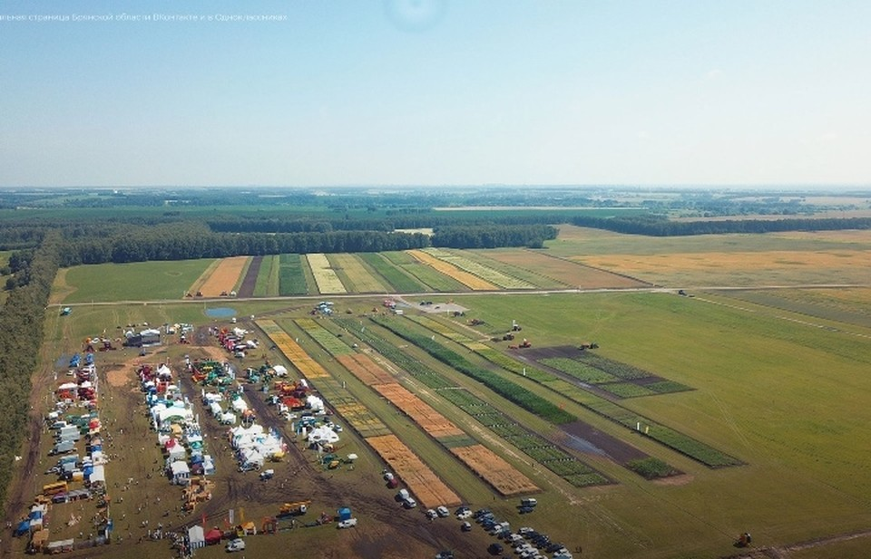 Под выставочные экспозиции отвели больше 20 гектаров площади, где высадили около 400 видов и гибридов культур, в том числе 128 сортов картофеля.