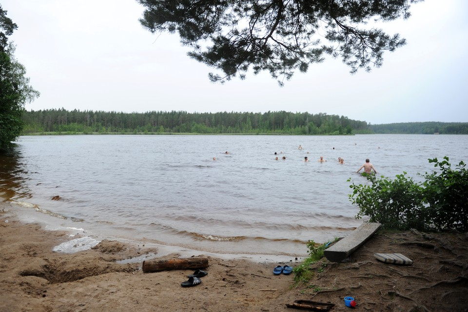 В Ленобласти за лето утонули 60 человек.