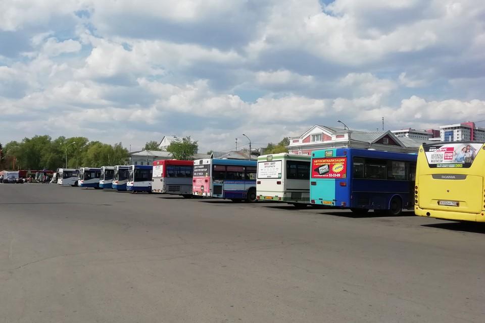 Водителей автобусов проверят в Алтайском крае