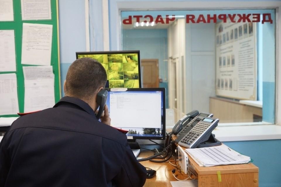 Волгоградцы каждый день приходят в полицию и пишут заявления на онлайн-мошенников.