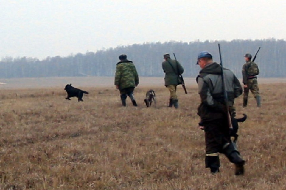 Охоту на пернатую дичь с одной подружейной собакой можно вести с участием не более трех человек.