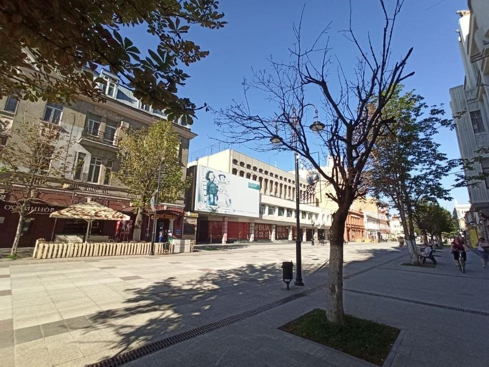 На проспекте Кирова засыхают деревья