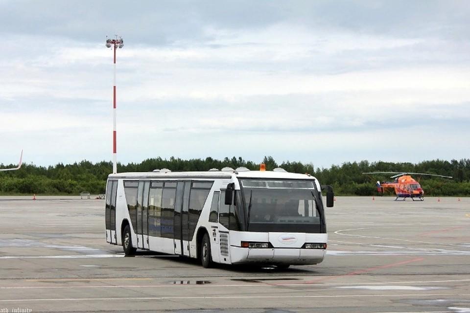 """Машины воздушная гавань купила в аэропорту «Домодедова» там их использовали раньше. Фото: vc.com, """"Брянский автобус""""."""