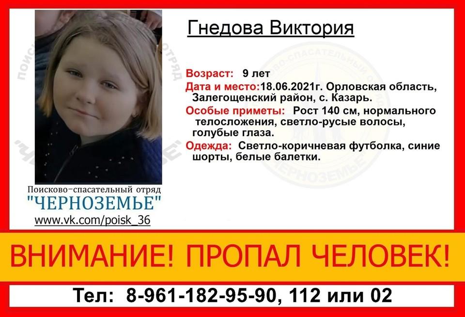 Если у вас есть какая-либо информация о местонахождении Виктории Гнедовой, позвоните по телефонам 8-961-182-95-90, 112 или 02