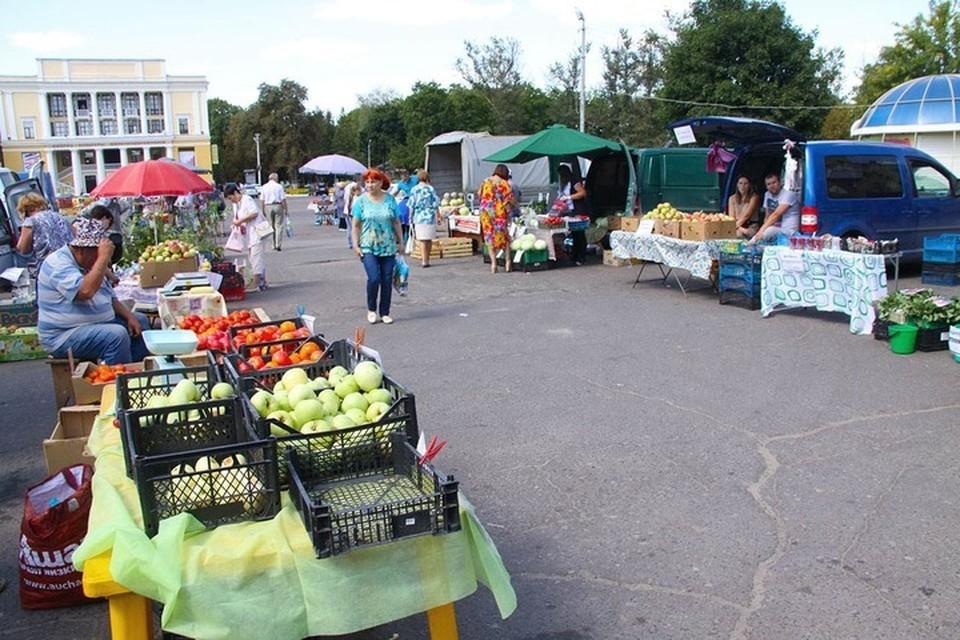 Под овощные базары в Брянске отдали 20 площадок.