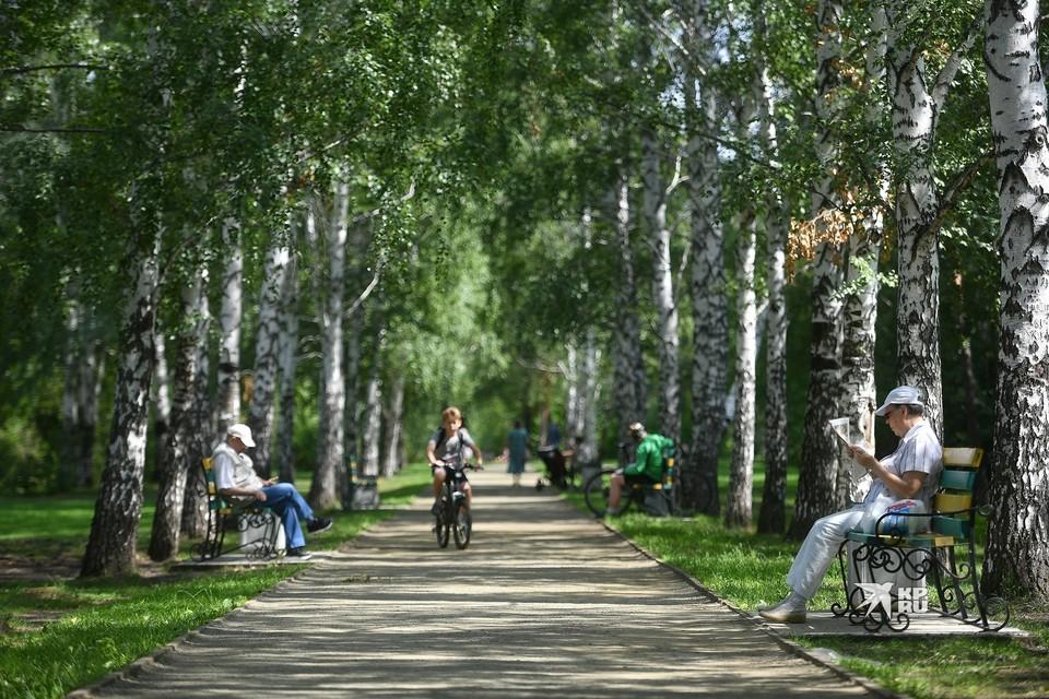В парке должно быть минимум изменений, так как горожане проголосовали за сохранение ландшафта