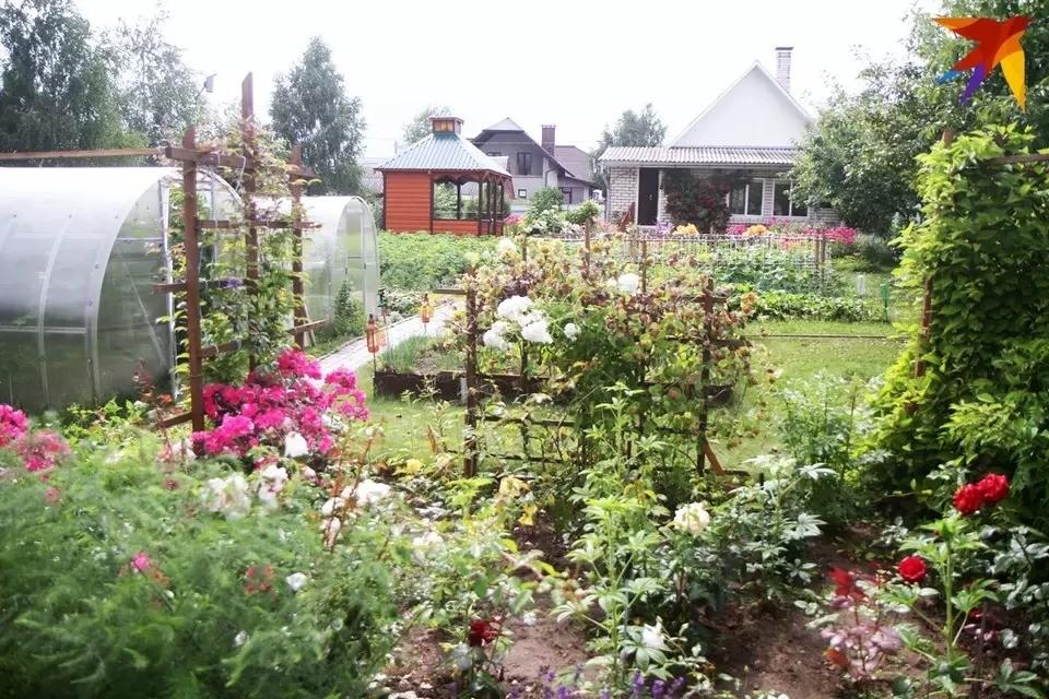 В Беларуси около пяти тысяч садоводческих товариществ