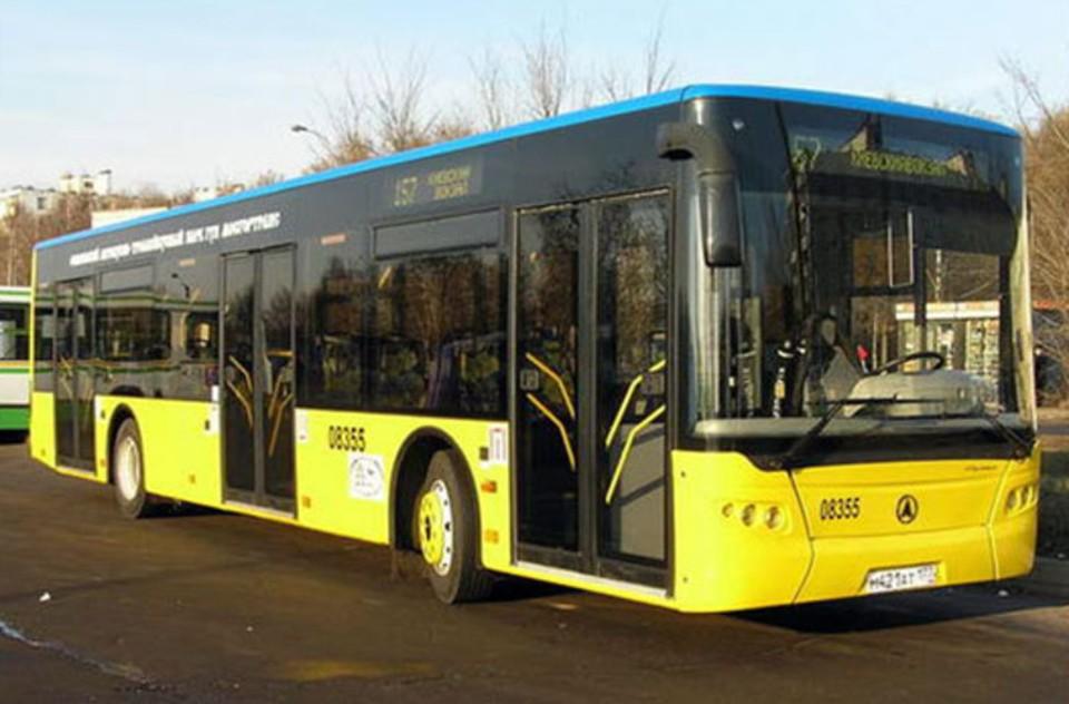 Муниципальные автобусы будут ходить по будням. Фото: ДонЭАТ