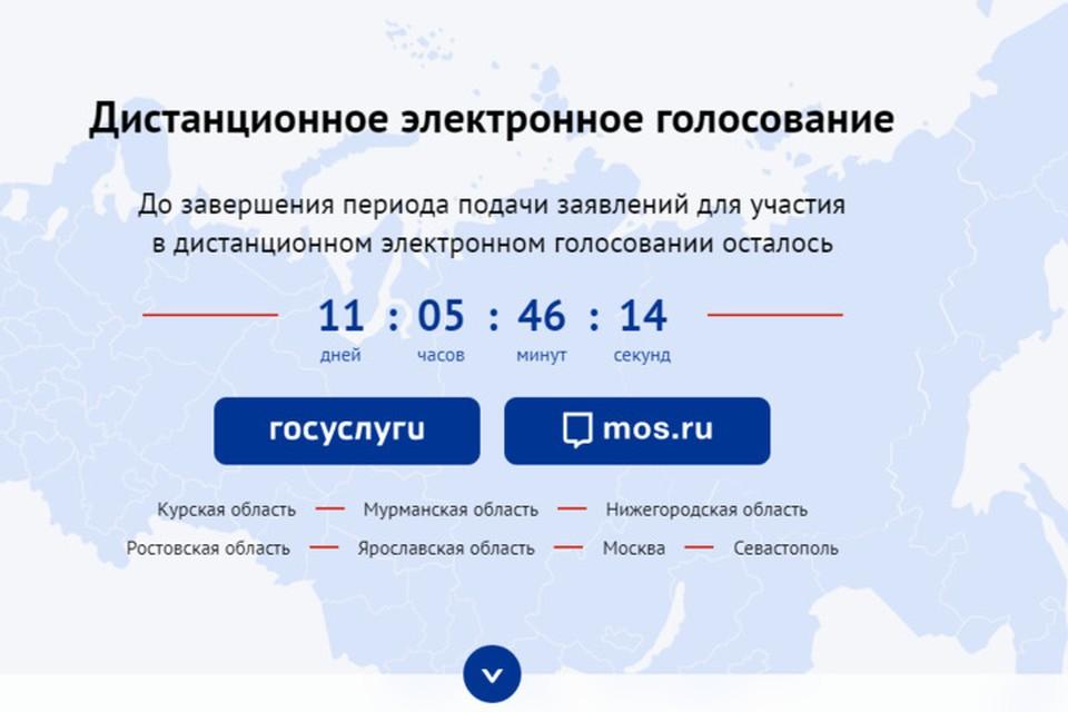 Для тренировки нужно будет зайти в портал ДЭГ. Фото: vybory.gov.ru
