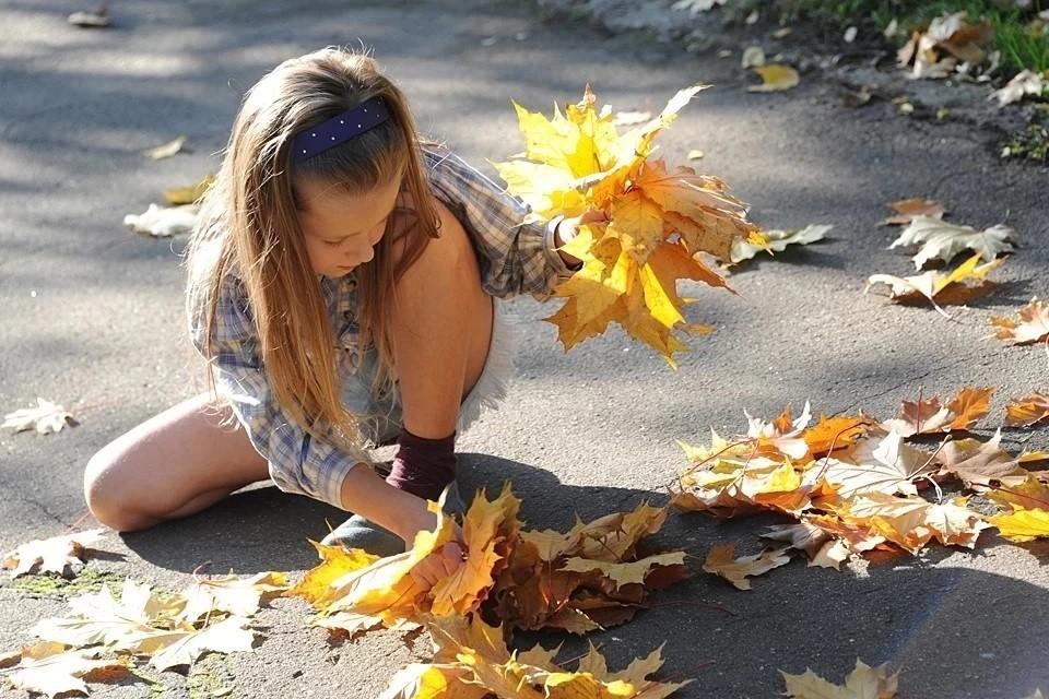 Тишковец рассказал, когда в Москву придет золотая осень и бабье лето