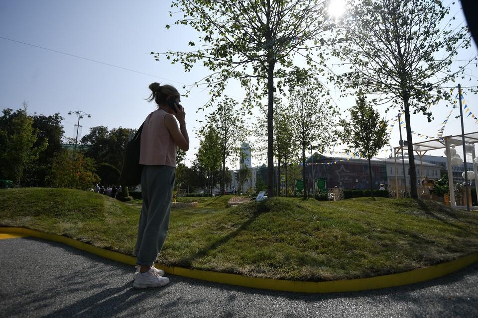 От организаторов фестиваля благоустроители города получили 12 деревьев